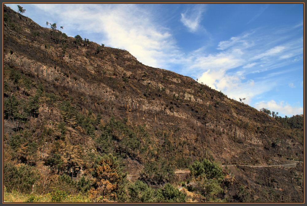 Der Appell an die Madeira Touristen