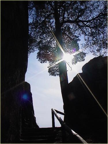 Der Aufstieg - der Sonne entgegen