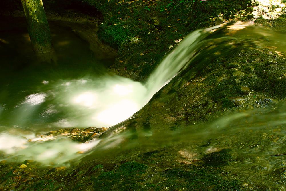 Der Bachverlauf im Wald