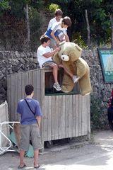 Der Bär muß nach oben, damit er eine gute Aussicht hat.
