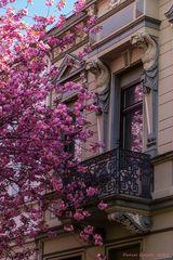 Der Balkon #2