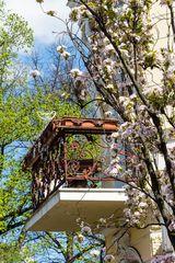 Der Balkon #3