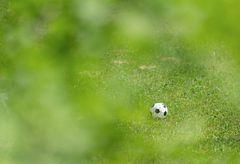 Der Ball ruht