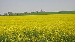 Der Bastorfer Leuchtturm im Frühling ...