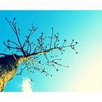 Der Baum der Freundschaft
