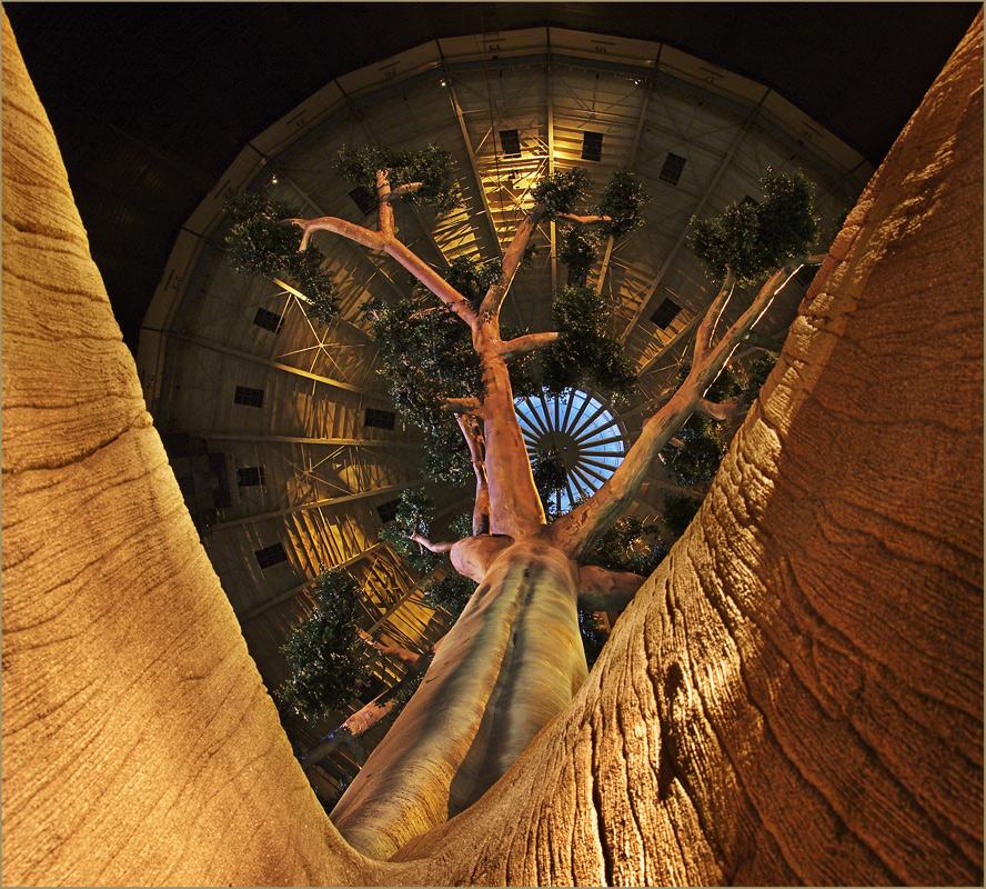 """"""" der Baum des Lebens """""""