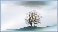 Der Baum im Nebel