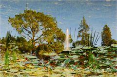 Der Baum im Teich