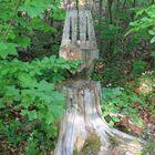 Der Baumstuhl