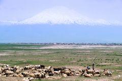 Der Berg Ararat