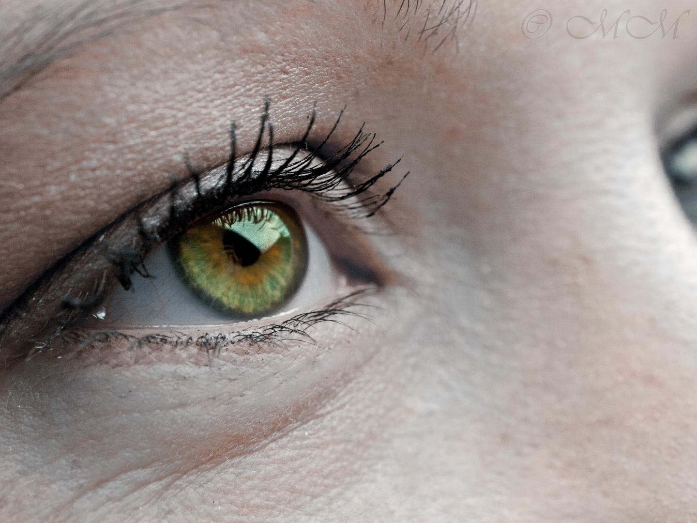 Der Blick...