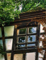 Der Blick durchs Fenster