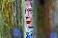 Der Blick von Rotkäppchen in das Wolfsgehege    (HDR-Aufnahme)