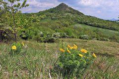 Der Blick zu einem botanisch herausragenden Berg, dem einige oder mindsetens ein Vokal fehlt