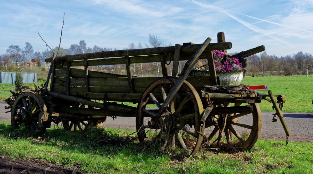 Der Blumenwagen