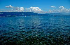 Der Bodensee ist ganz schön blau, ...