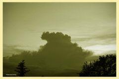 Der böse Wolf - 2 -