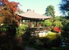 Der Bonsai-Garten in Ferch
