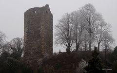 Der Burgturm der Ruine Laufenburg