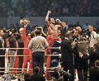 Der Champ