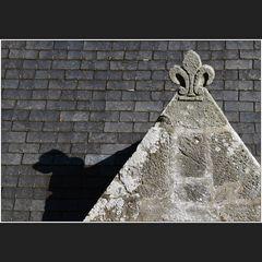 Der Dackel auf dem Dach