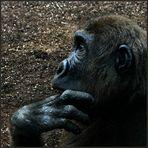 """""""Der Denker"""" ... frei nach Rodin"""