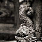 Der Drachenfisch
