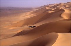 Der Dünenkamm liegt hinter uns, die Jahrtausendwende noch vor uns