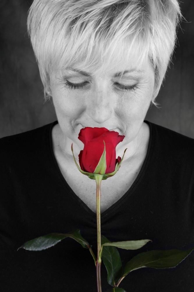Der Duft einer Rose