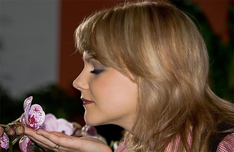 Der Duft von Orchideen