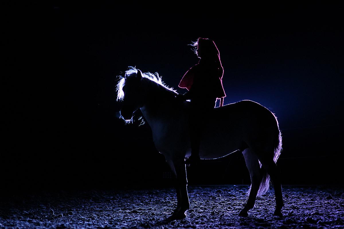 der dunkle Reiter