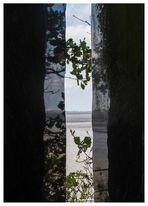 der Durchblick am Tor zum Watt
