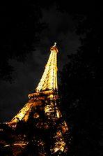 Der Eiffelturm am Abend II