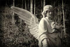 Der einflügelige Engel