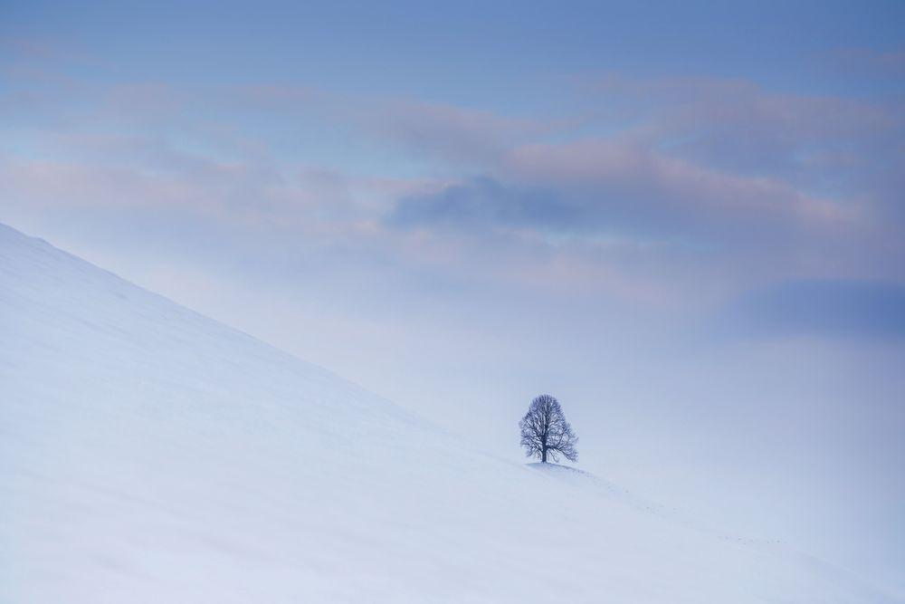 Der Einsame 1