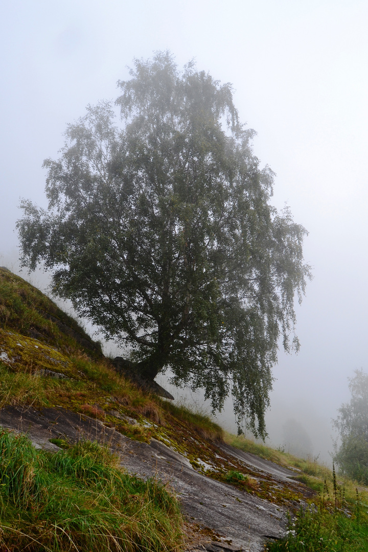 der Einsame mitten in Norwegen