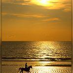 Der einsame Reiter..