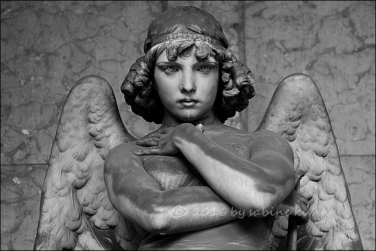 """...""""der engel von monteverde""""..."""