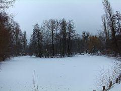 der Ententeich ist Schnee bedeckt