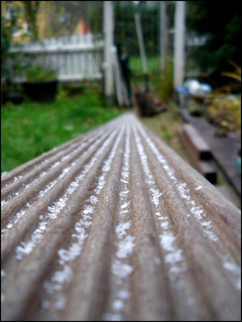 Der erste Schnee 2010