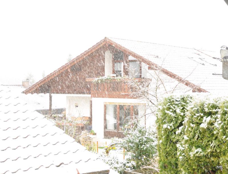 Der erste Schnee 2010!