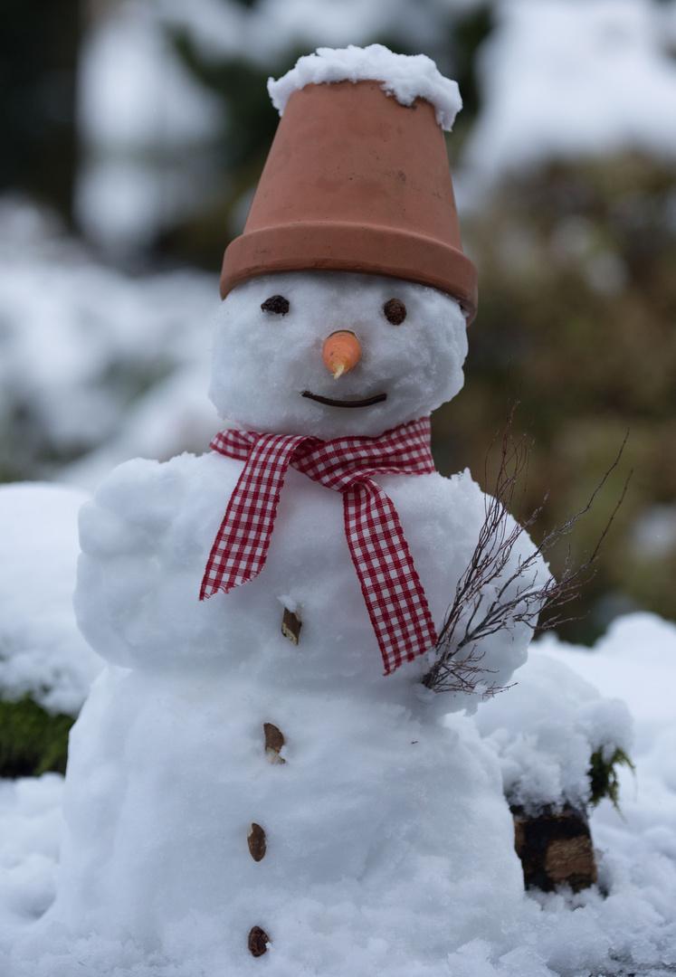 Der erste Schnee......