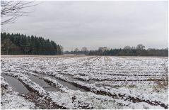 der erste Schnee auf dem Matsch