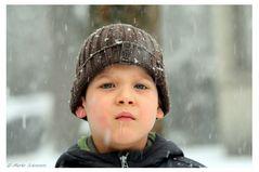 ` Der erste Schnee `