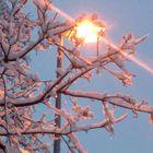 der erste Schnee in Bozen wird beleuchtet