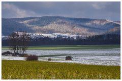 Der erste Schnee... - Spürst Du die feuchte Kälte... ?