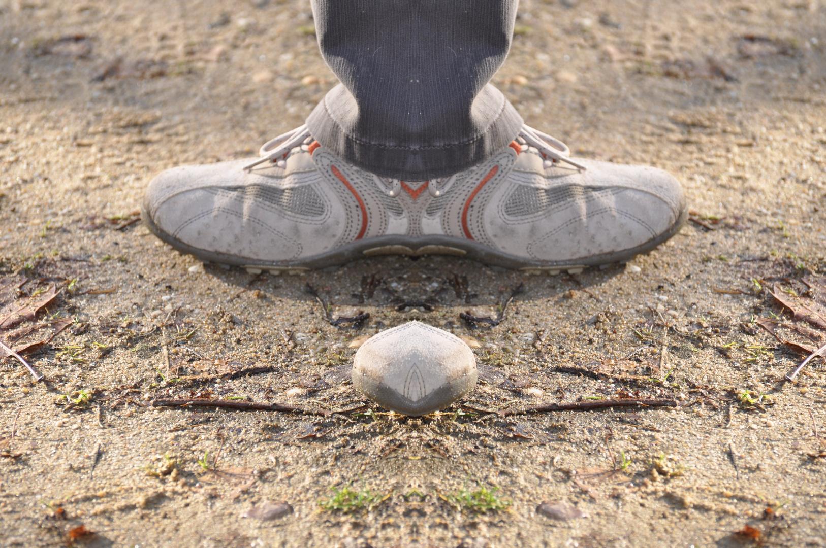 Der erste Schuh mit dem man in beide Richtungen gehen kann