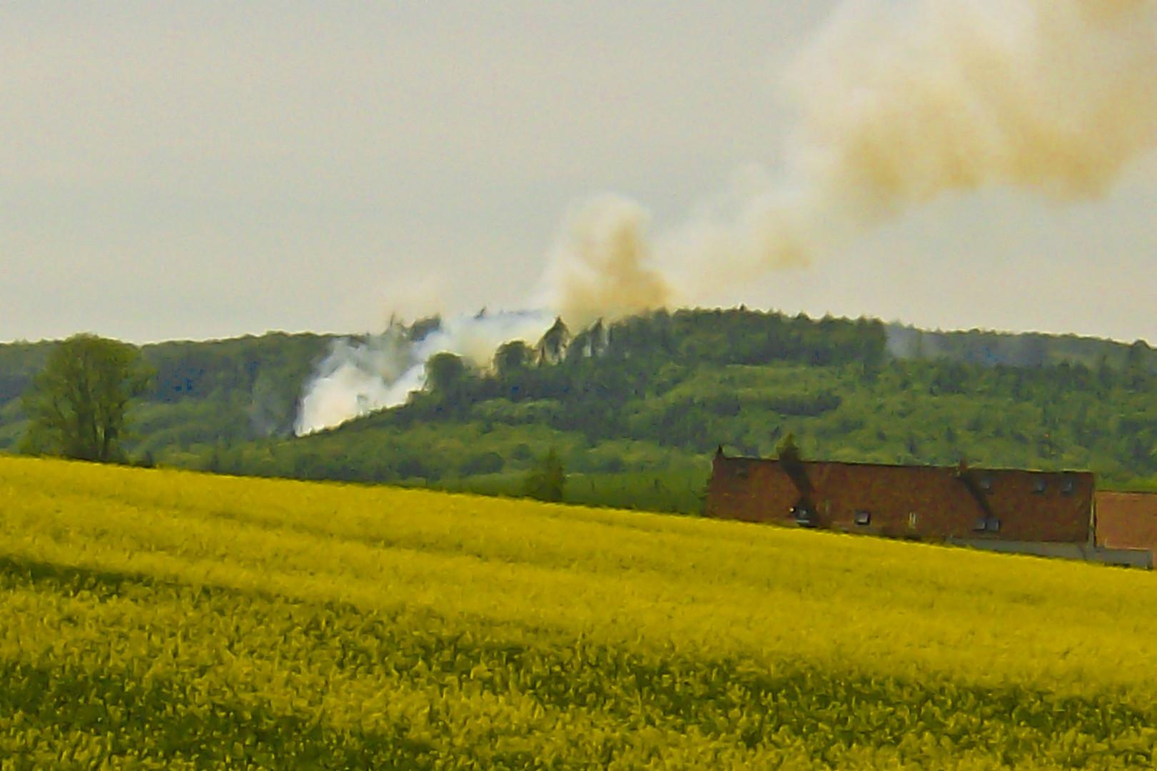 Der erste Waldbrand dieses Jahr.