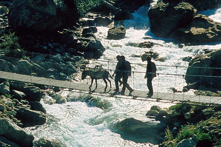 Der Esel muss über die Brücke!