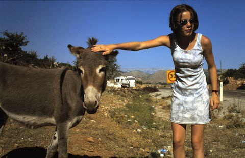 Der Esel und das Mädchen
